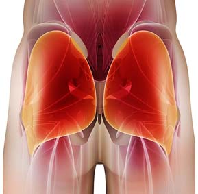 glute muscle - Unlock Your Glutes – Conversion Monster!