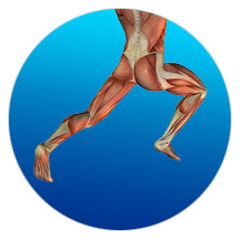 time - Unlock Your Glutes – Conversion Monster!